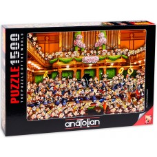 Anatolian 1500 - Concert